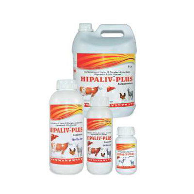 animals surgical infections medicine